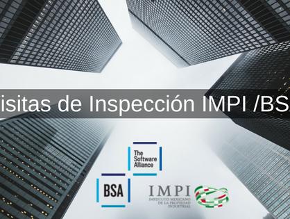 Vistas Inspección IMPI/BSA